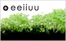 eeiiuu-banner.jpg